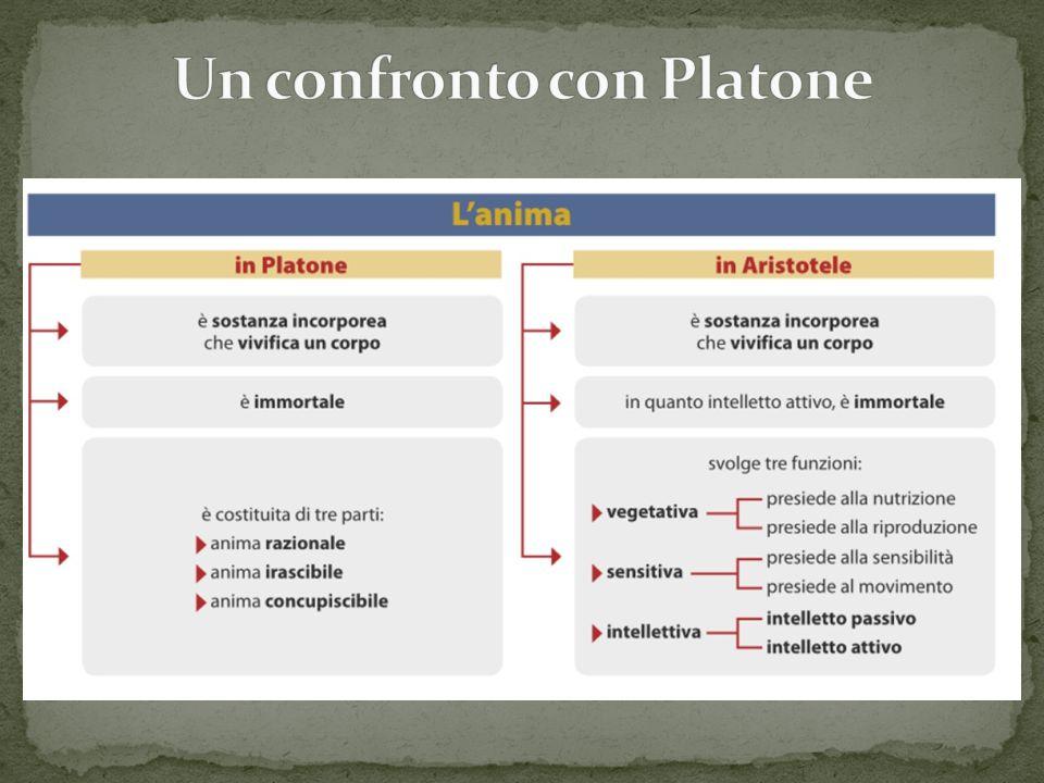 Un confronto con Platone