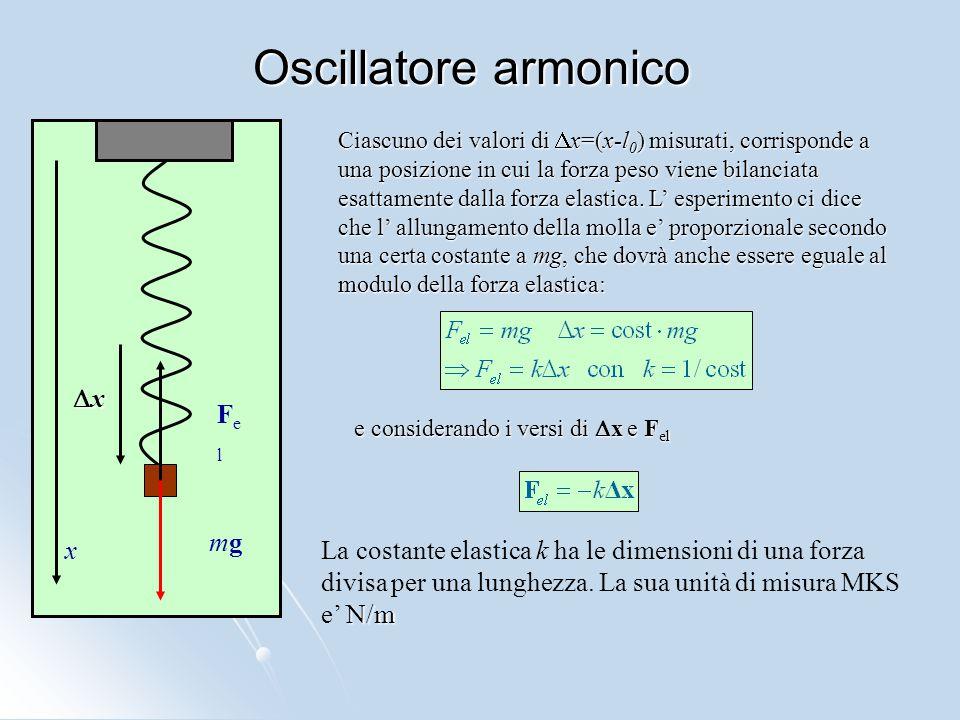 Oscillatore armonico Dx Fel mg x