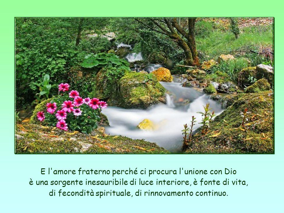 E l amore fraterno perché ci procura l unione con Dio è una sorgente inesauribile di luce interiore, è fonte di vita, di fecondità spirituale, di rinnovamento continuo.