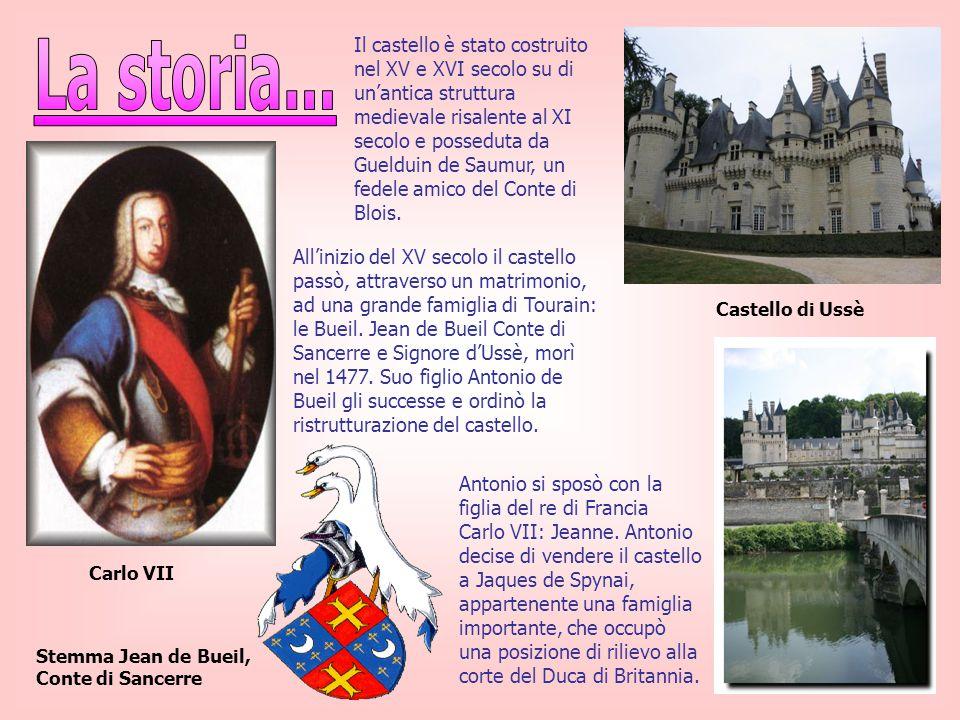Il castello è stato costruito nel XV e XVI secolo su di un'antica struttura medievale risalente al XI secolo e posseduta da Guelduin de Saumur, un fedele amico del Conte di Blois.