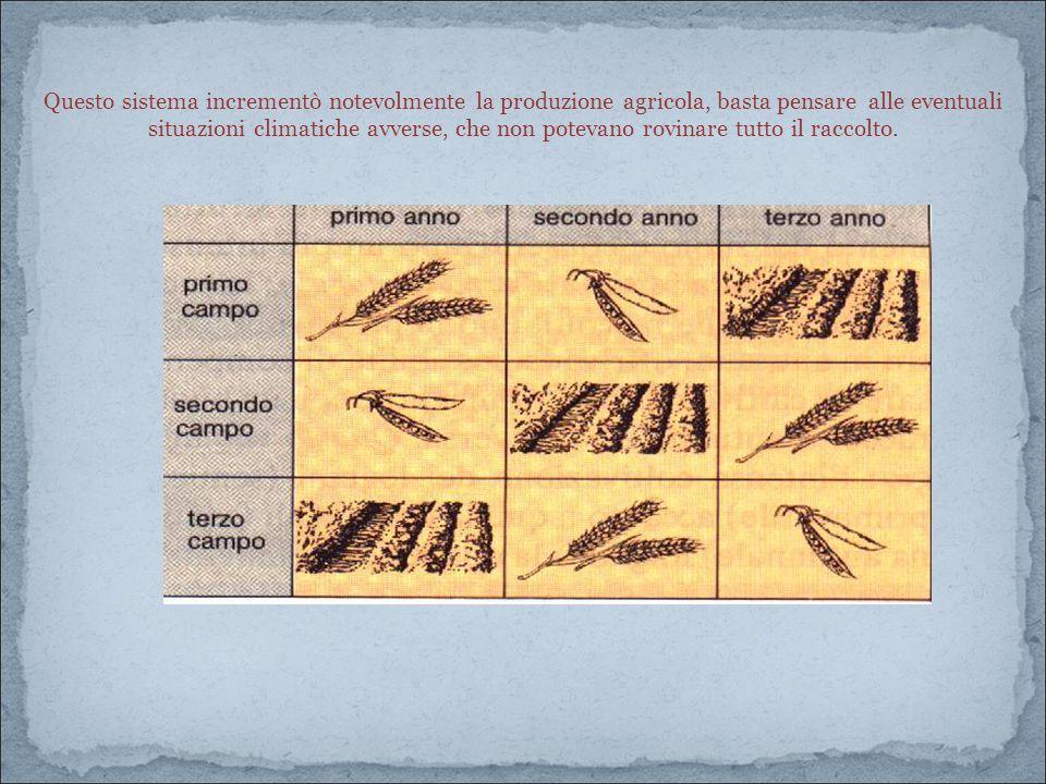 Questo sistema incrementò notevolmente la produzione agricola, basta pensare alle eventuali situazioni climatiche avverse, che non potevano rovinare tutto il raccolto.