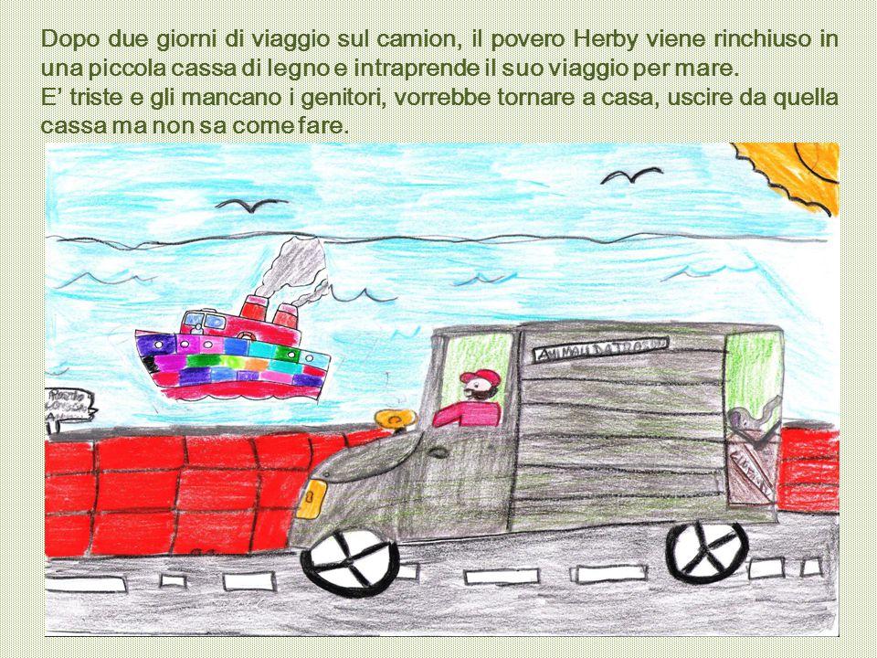 Dopo due giorni di viaggio sul camion, il povero Herby viene rinchiuso in una piccola cassa di legno e intraprende il suo viaggio per mare.
