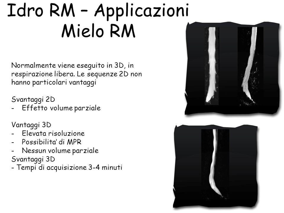 Idro RM – Applicazioni Mielo RM