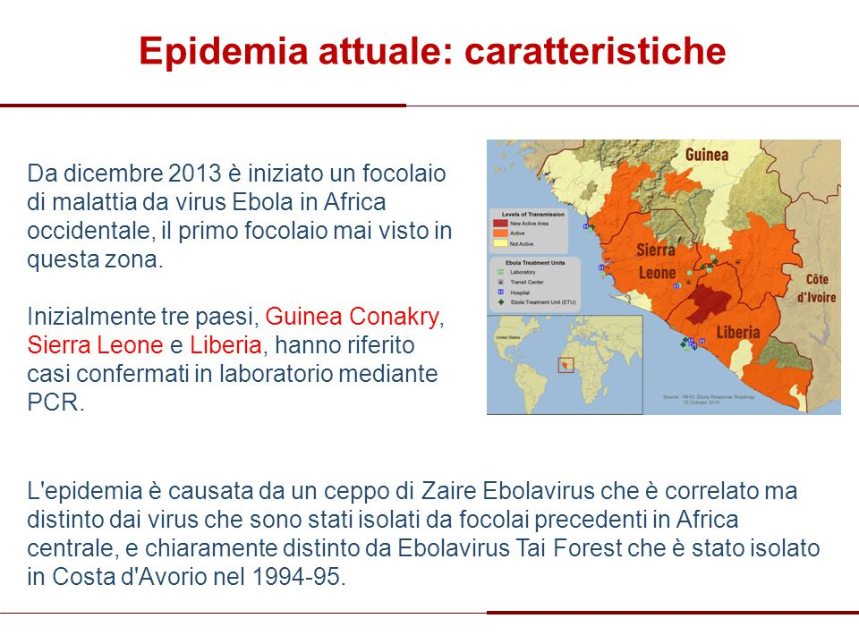 Epidemia attuale: caratteristiche