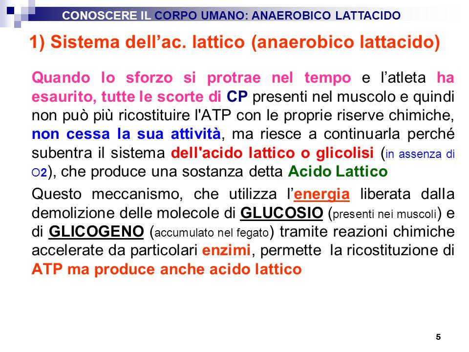 1) Sistema dell'ac. lattico (anaerobico lattacido)