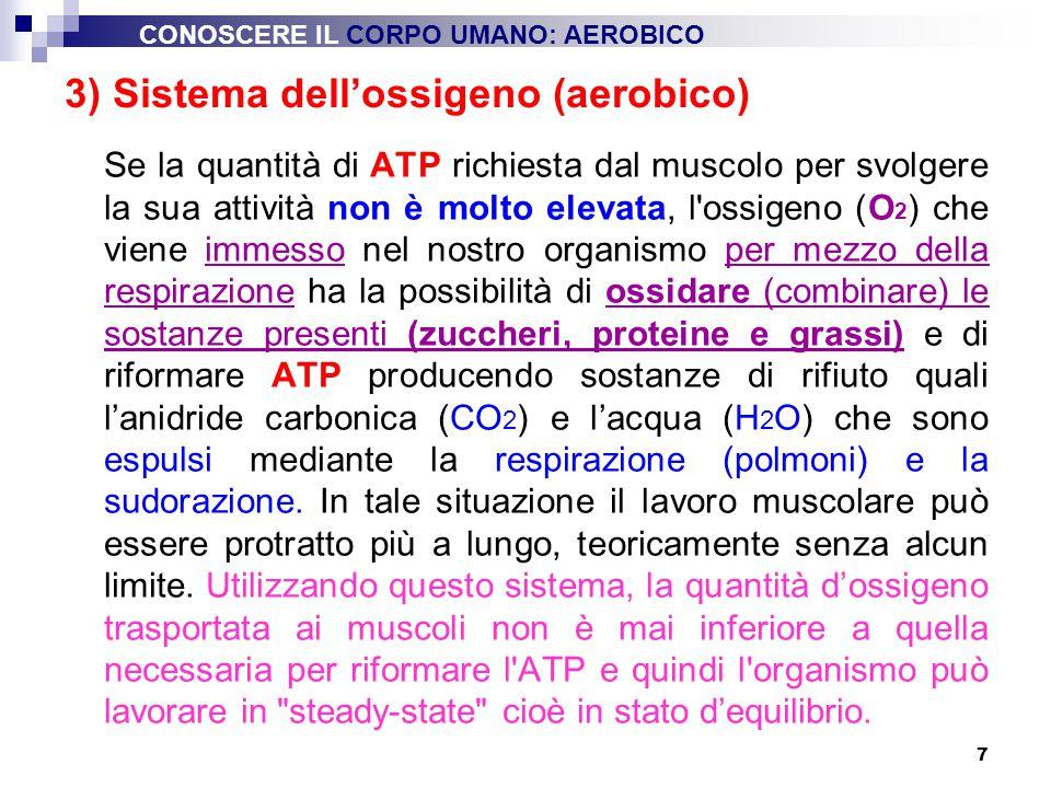 3) Sistema dell'ossigeno (aerobico)