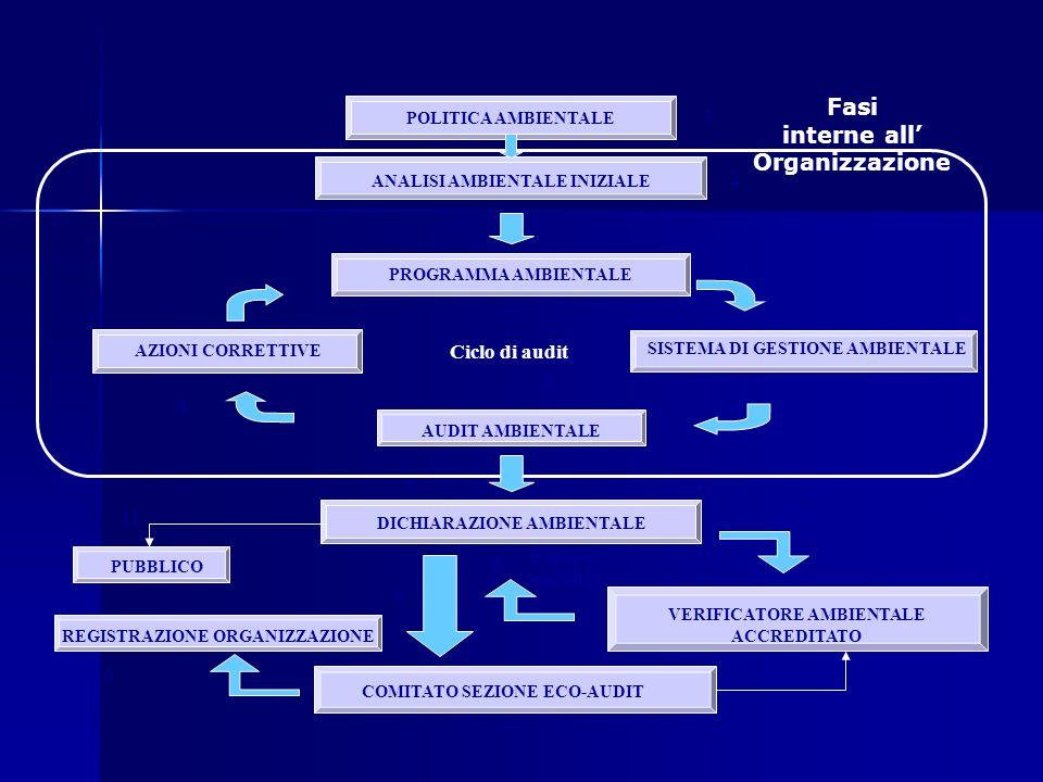 Fasi interne all' Organizzazione Fasi esterne all' Organizzazione