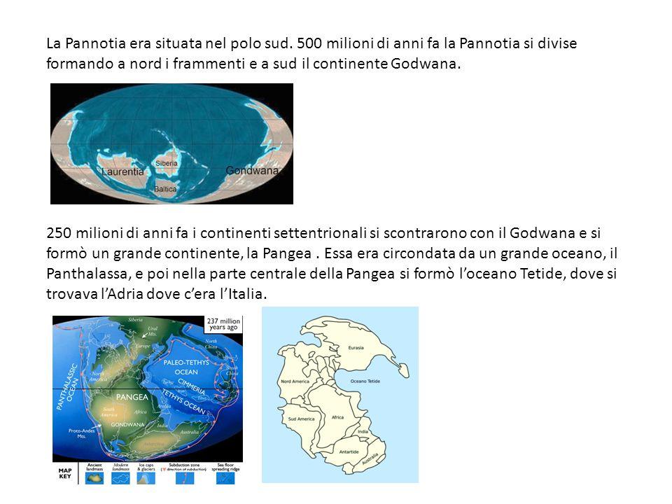 La Pannotia era situata nel polo sud