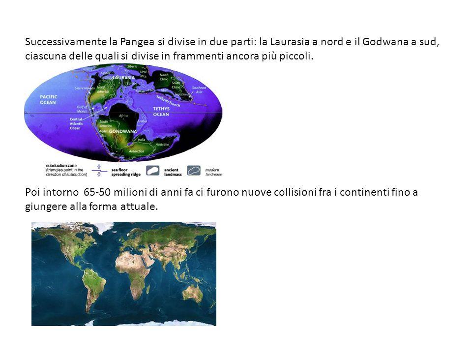 Successivamente la Pangea si divise in due parti: la Laurasia a nord e il Godwana a sud, ciascuna delle quali si divise in frammenti ancora più piccoli.