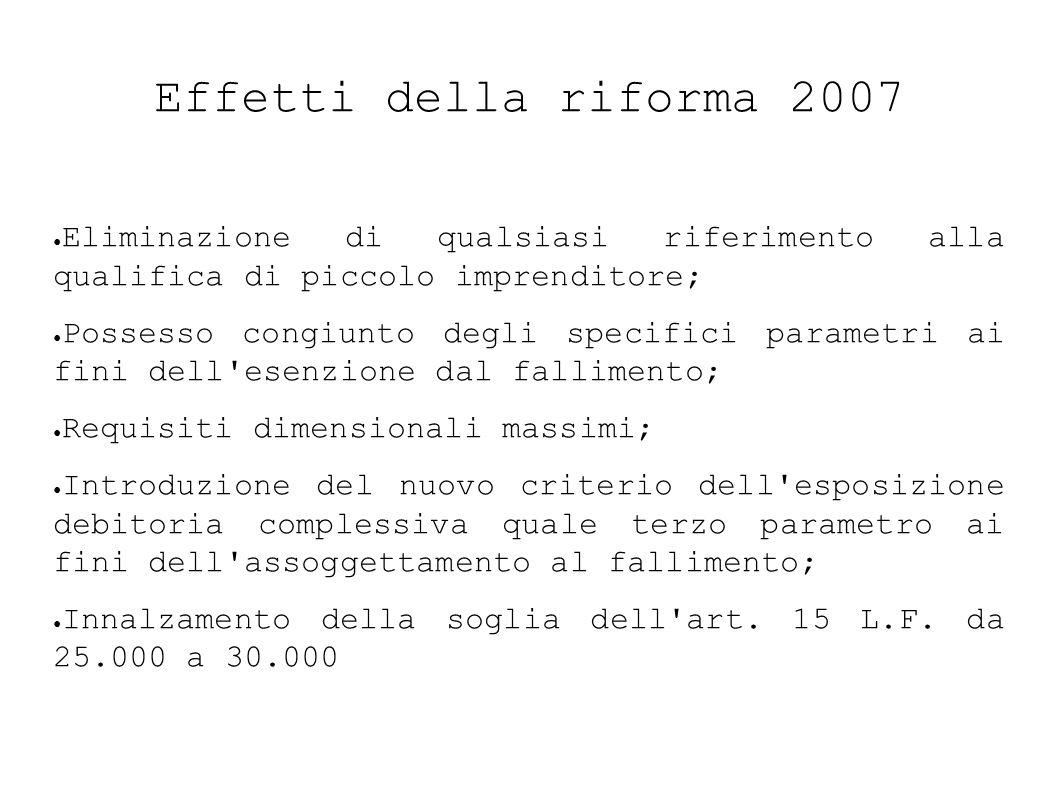 Effetti della riforma 2007 Eliminazione di qualsiasi riferimento alla qualifica di piccolo imprenditore;