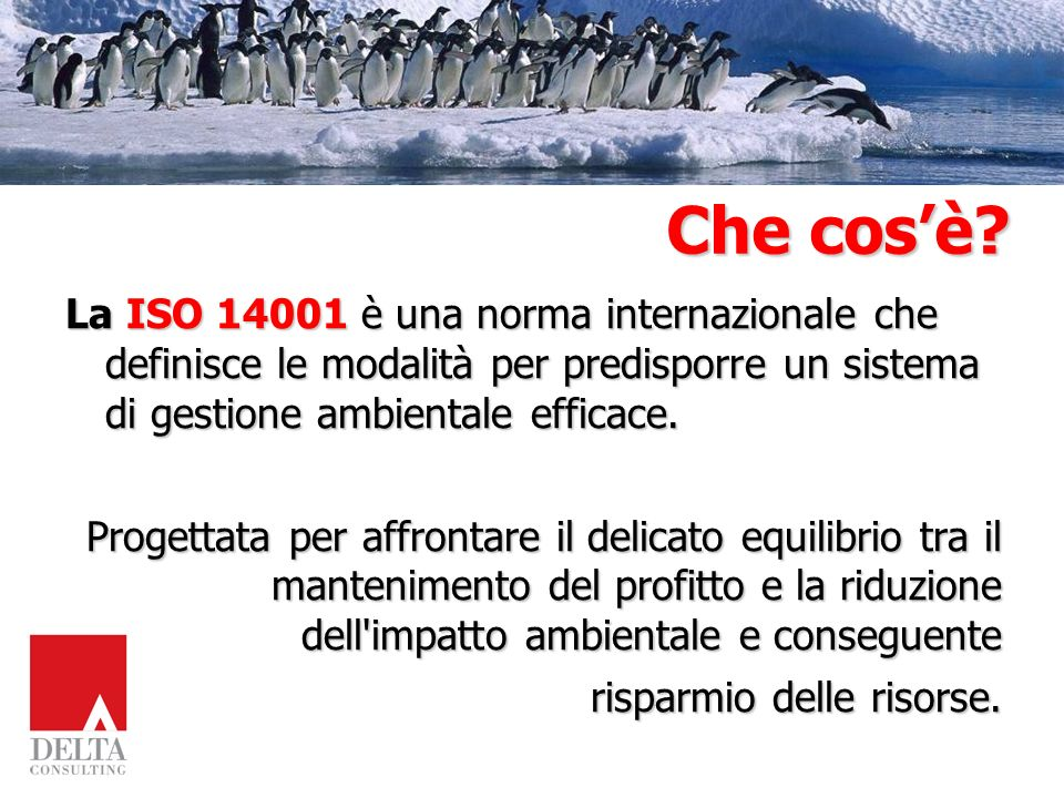 Che cos'è La ISO 14001 è una norma internazionale che definisce le modalità per predisporre un sistema di gestione ambientale efficace.