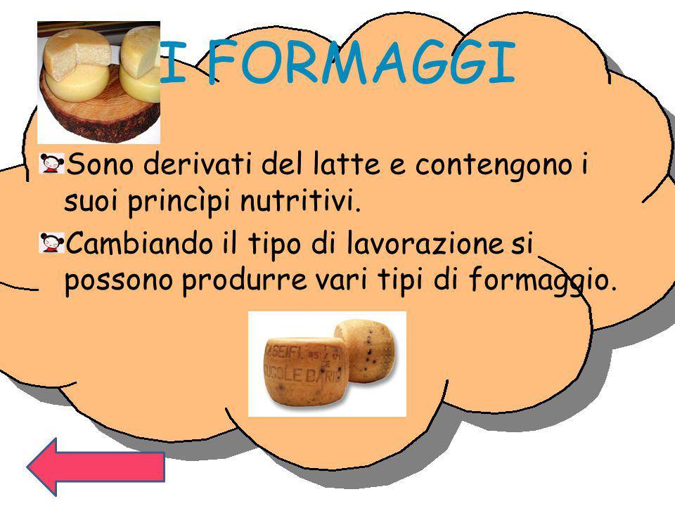 I FORMAGGI Sono derivati del latte e contengono i suoi princìpi nutritivi.