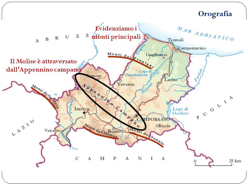 Orografia Evidenziamo i monti principali