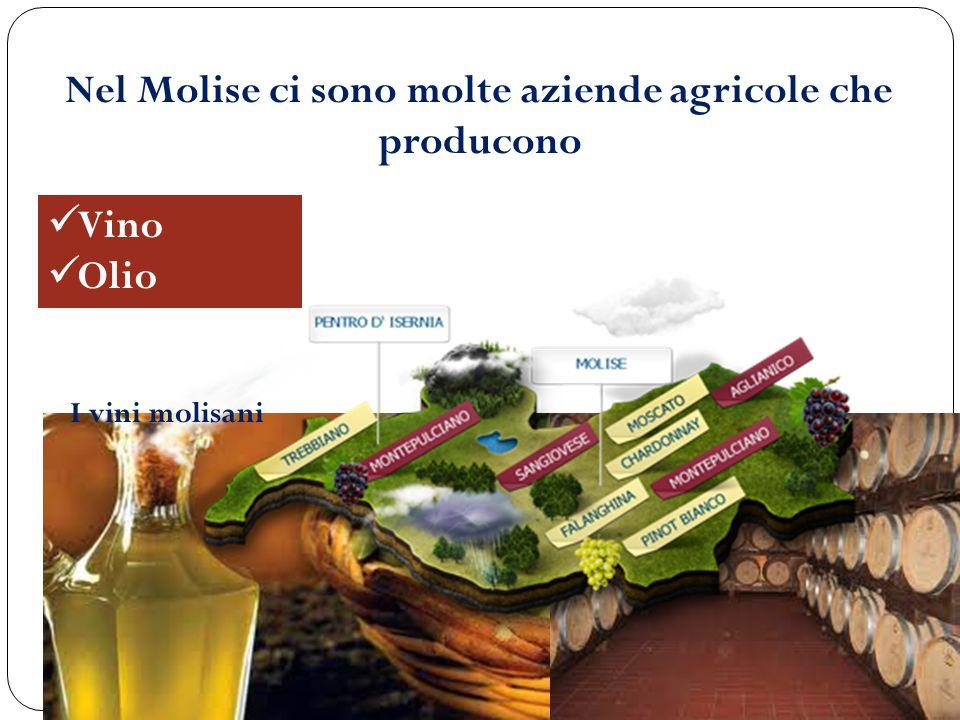 Nel Molise ci sono molte aziende agricole che producono
