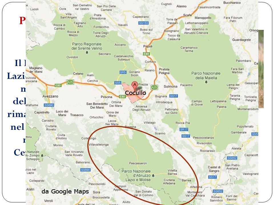 Parco nazionale dell' Abruzzo, Lazio e Molise