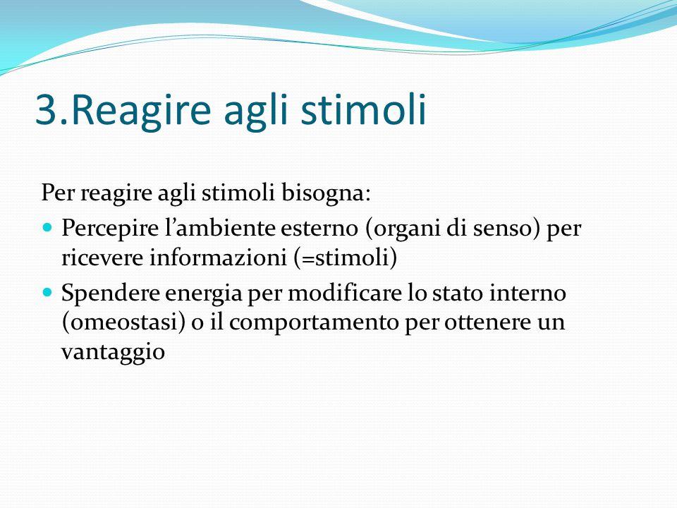 3.Reagire agli stimoli Per reagire agli stimoli bisogna:
