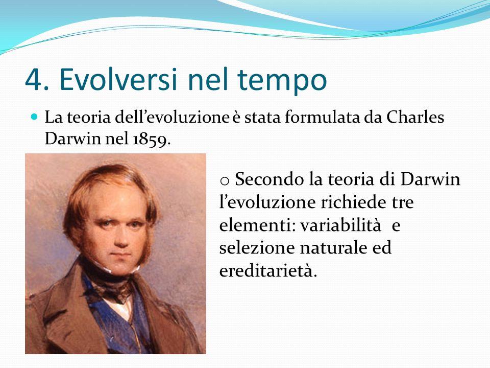 4. Evolversi nel tempo La teoria dell'evoluzione è stata formulata da Charles Darwin nel 1859. ereditarietà.
