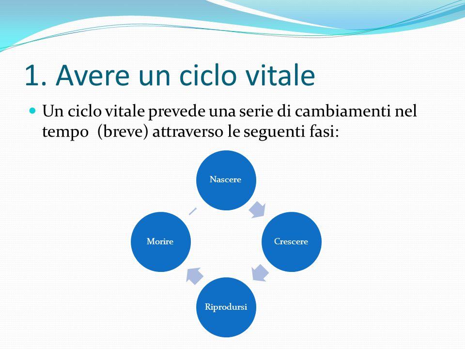 1. Avere un ciclo vitale Un ciclo vitale prevede una serie di cambiamenti nel tempo (breve) attraverso le seguenti fasi: