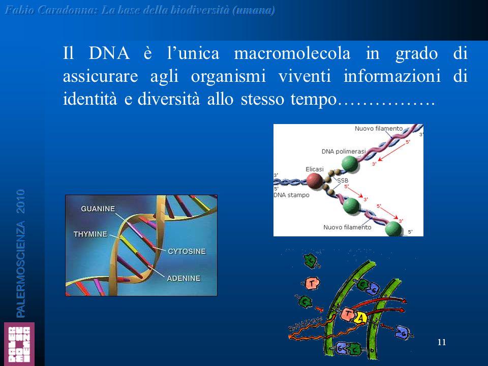 Il DNA è l'unica macromolecola in grado di assicurare agli organismi viventi informazioni di identità e diversità allo stesso tempo…………….