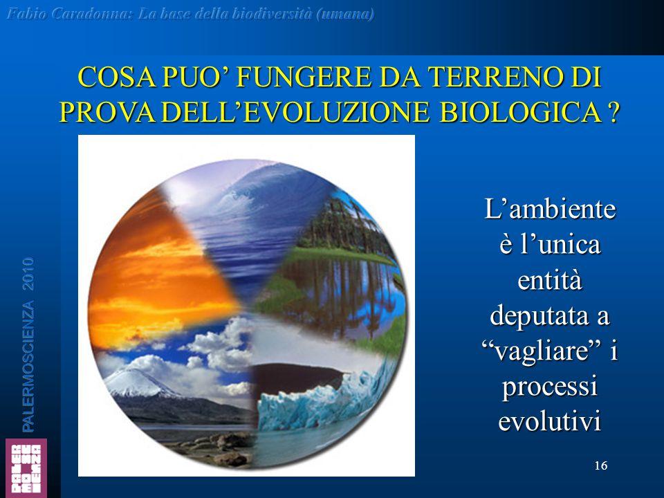 COSA PUO' FUNGERE DA TERRENO DI PROVA DELL'EVOLUZIONE BIOLOGICA