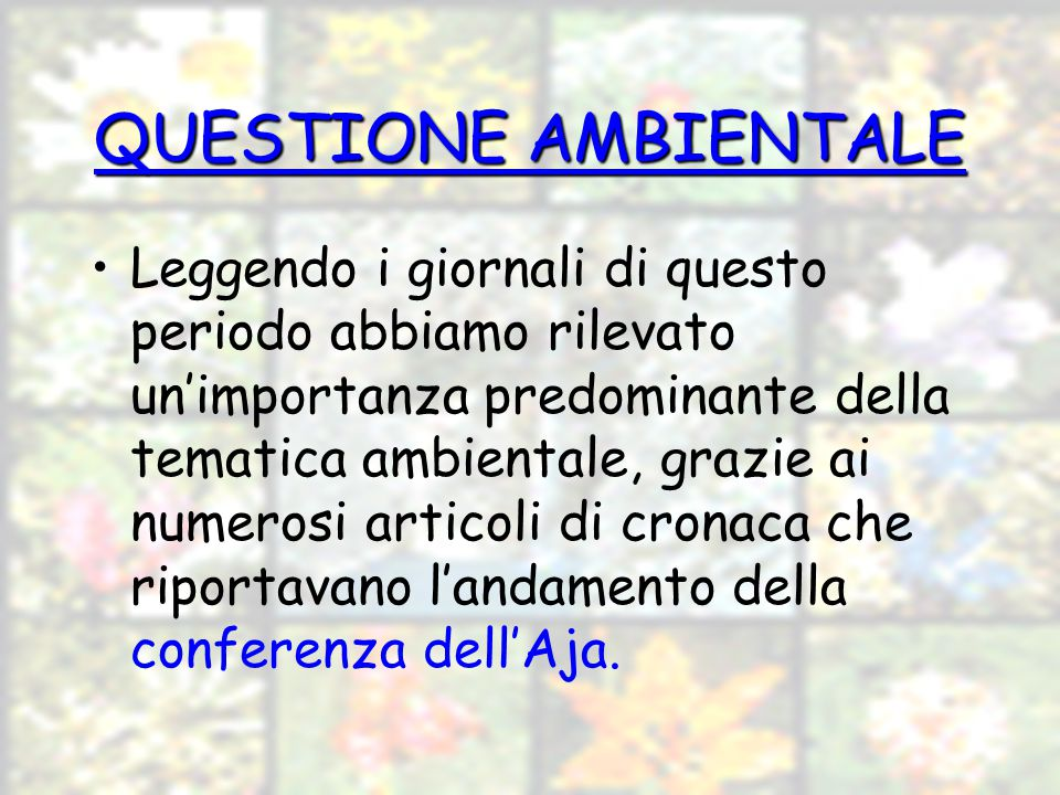 QUESTIONE AMBIENTALE