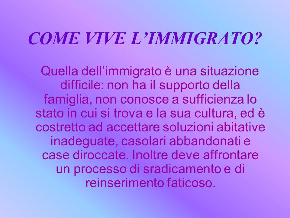 COME VIVE L'IMMIGRATO