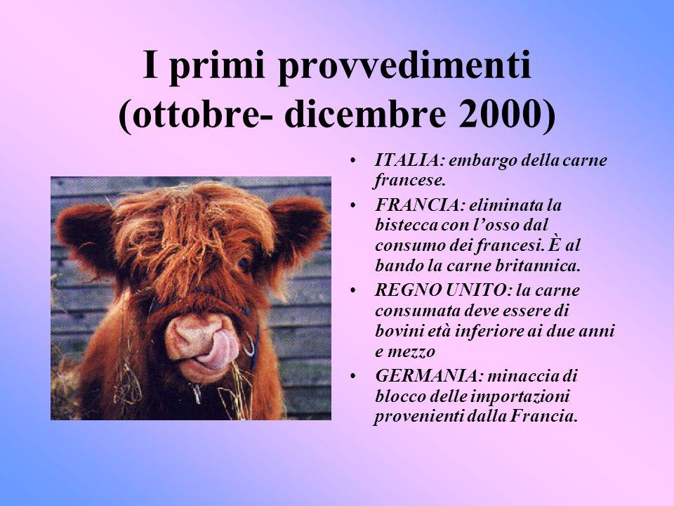 I primi provvedimenti (ottobre- dicembre 2000)