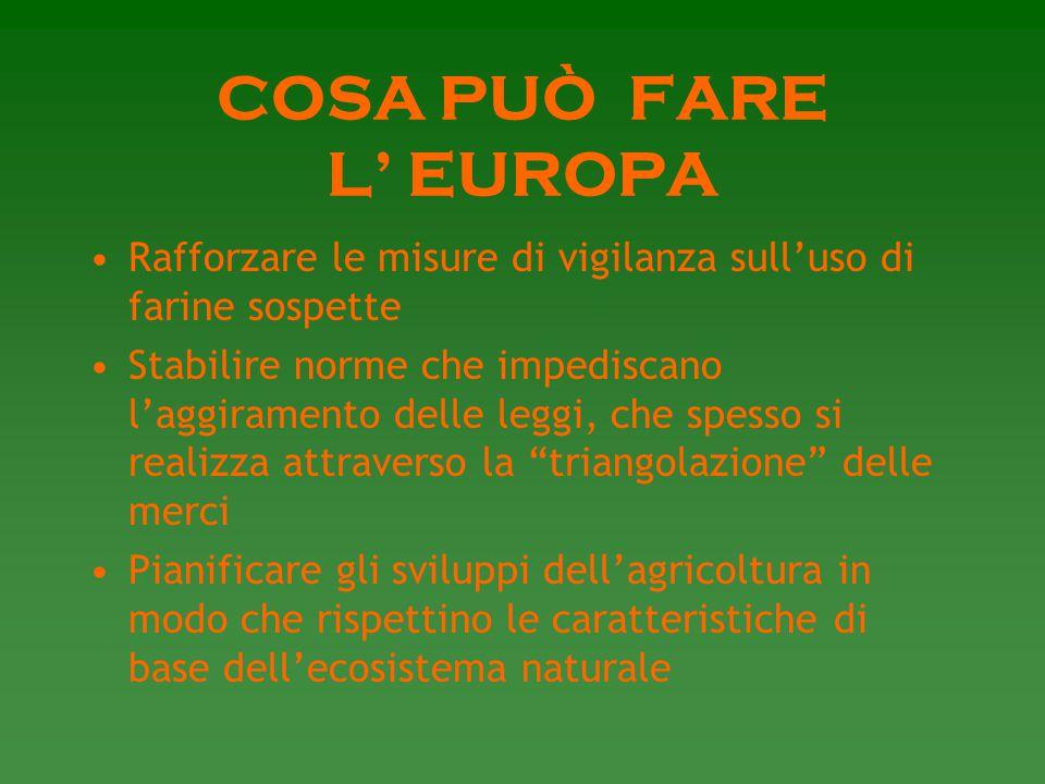 COSA PUÒ FARE L' EUROPA Rafforzare le misure di vigilanza sull'uso di farine sospette.