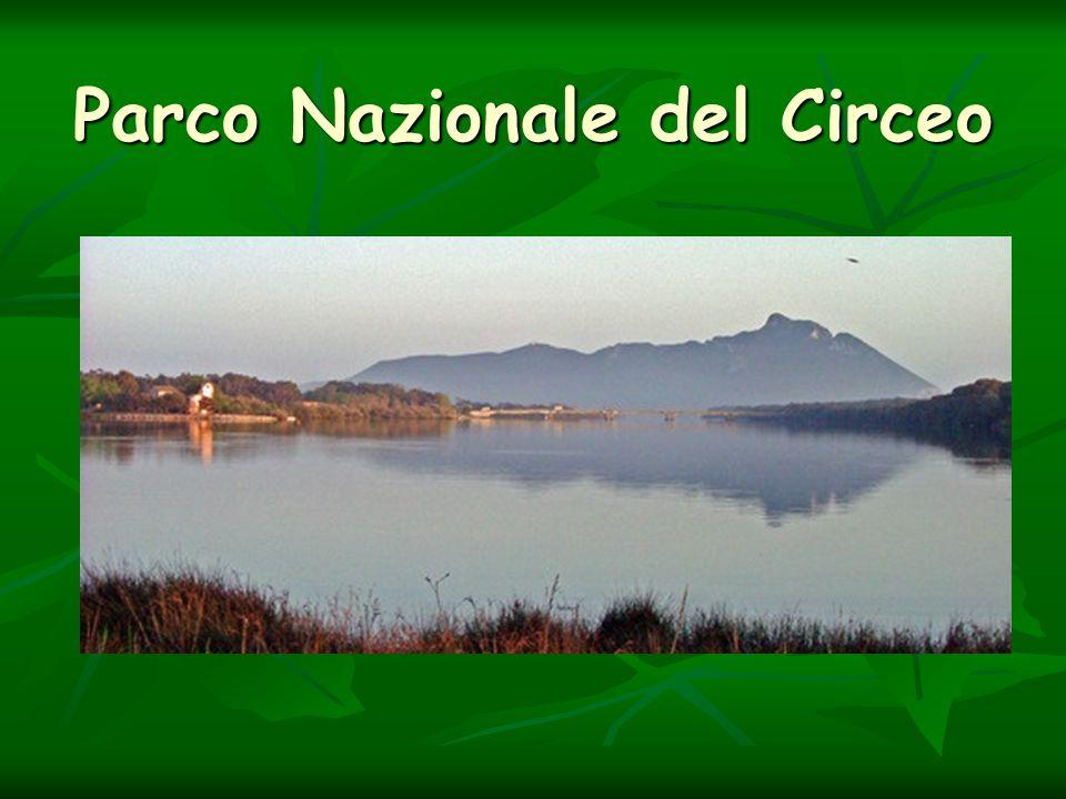 Parco Nazionale del Circeo