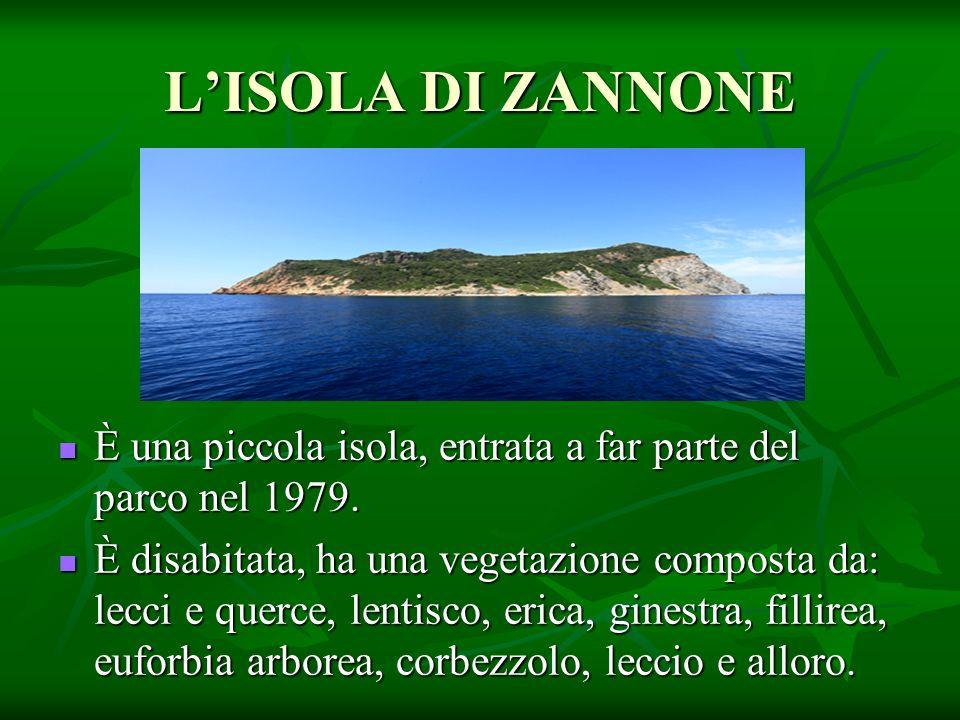 L'ISOLA DI ZANNONE È una piccola isola, entrata a far parte del parco nel 1979.