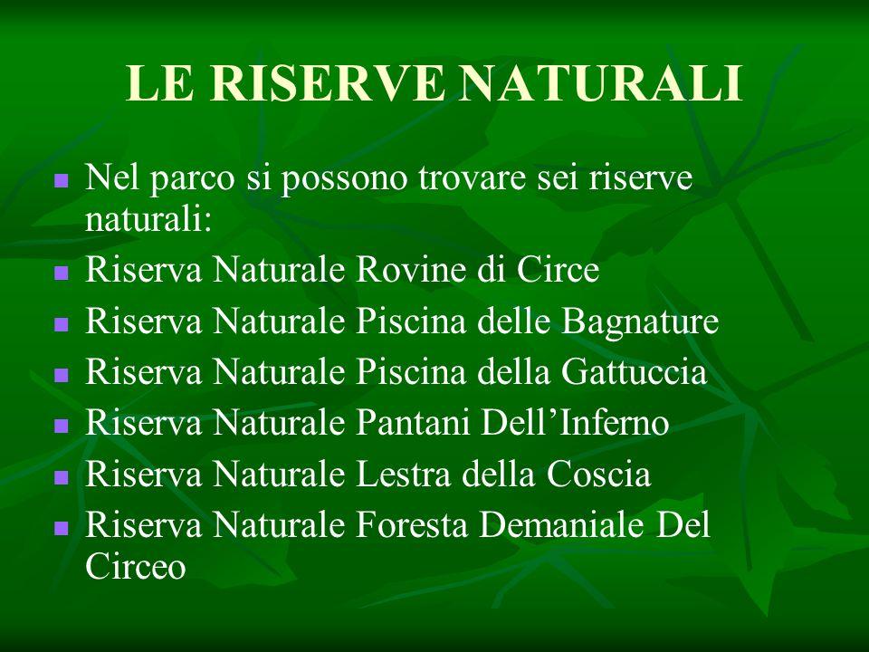 LE RISERVE NATURALI Nel parco si possono trovare sei riserve naturali: