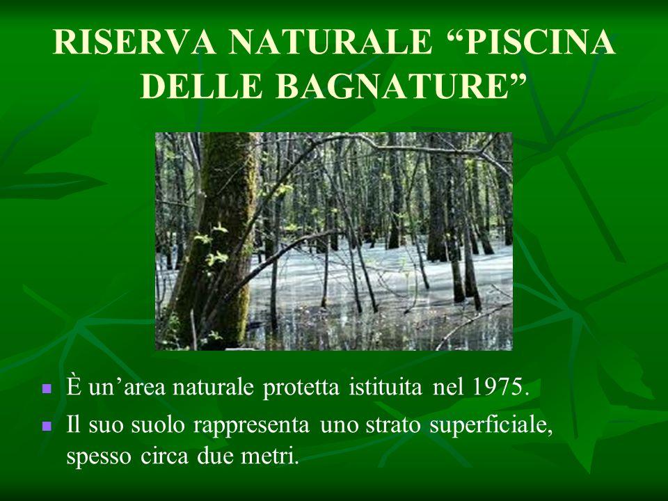 RISERVA NATURALE PISCINA DELLE BAGNATURE