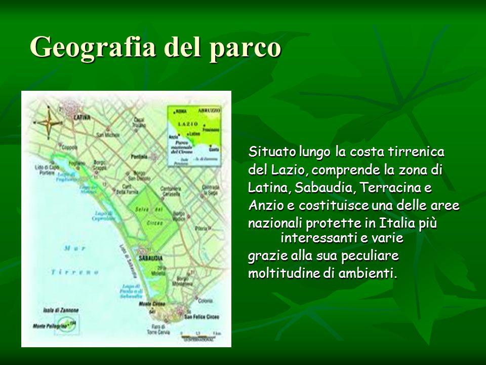 Geografia del parco Situato lungo la costa tirrenica