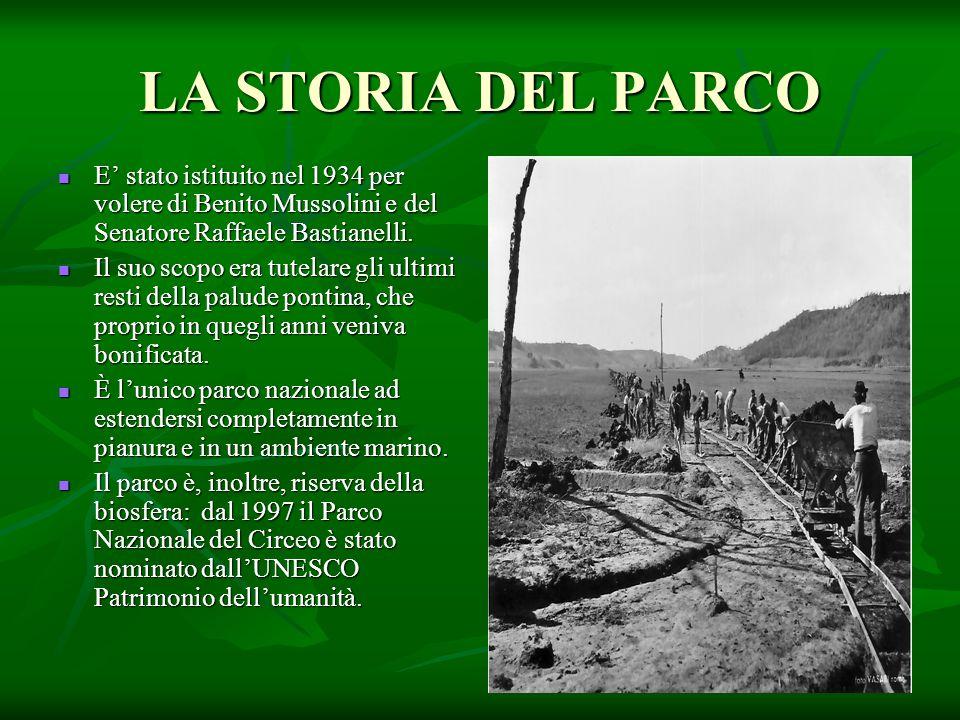 LA STORIA DEL PARCO E' stato istituito nel 1934 per volere di Benito Mussolini e del Senatore Raffaele Bastianelli.