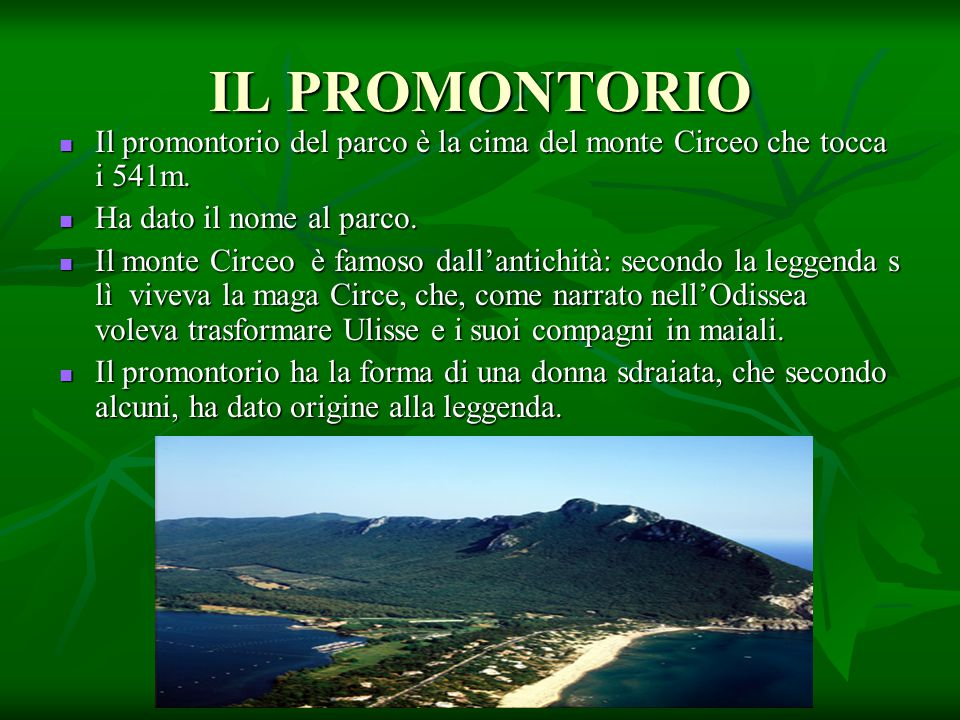 IL PROMONTORIO Il promontorio del parco è la cima del monte Circeo che tocca i 541m. Ha dato il nome al parco.