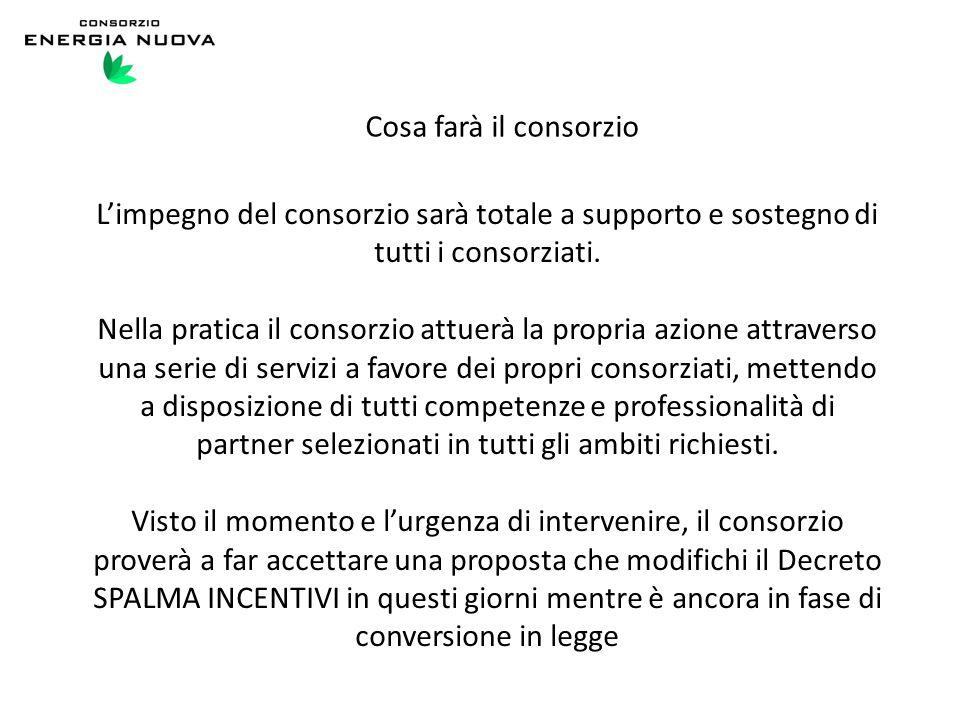 Cosa farà il consorzio L'impegno del consorzio sarà totale a supporto e sostegno di tutti i consorziati.
