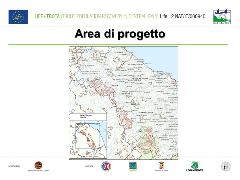 Area di progetto
