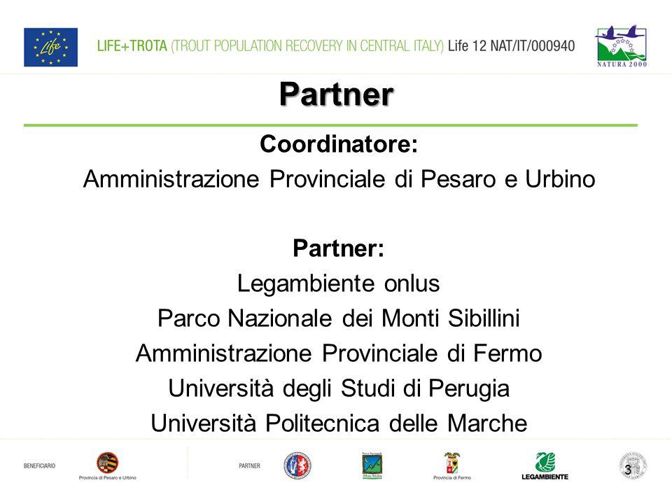 Partner Coordinatore: Amministrazione Provinciale di Pesaro e Urbino
