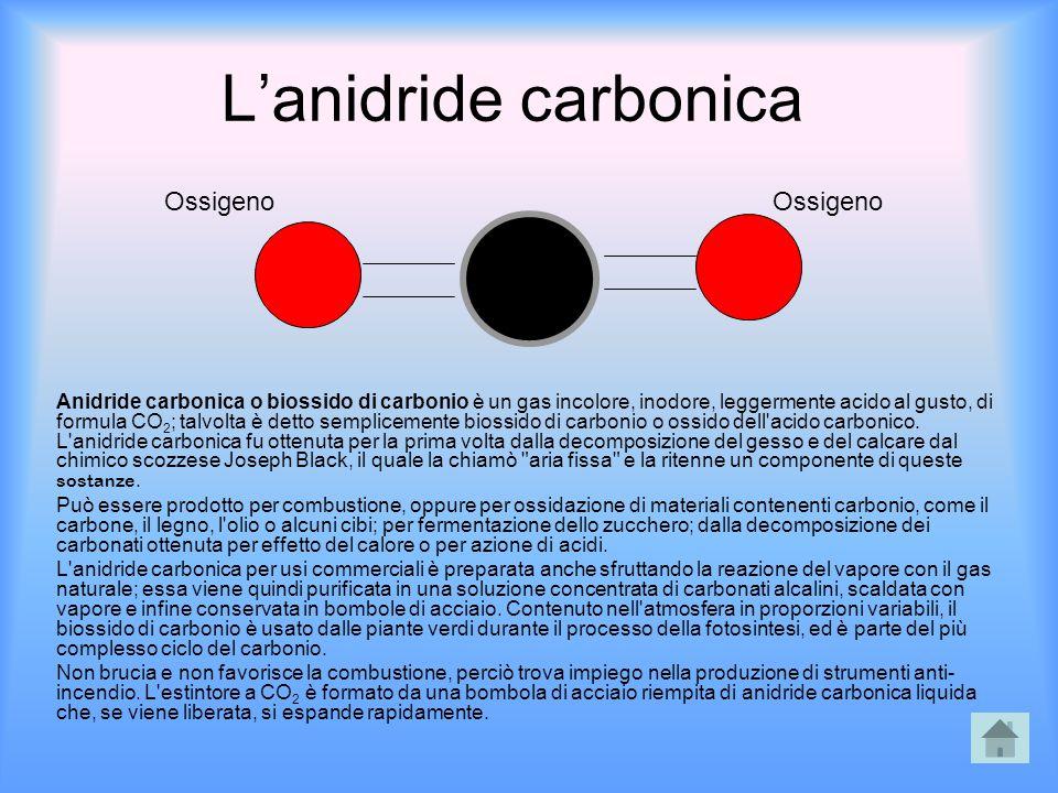 L'anidride carbonica Ossigeno Ossigeno