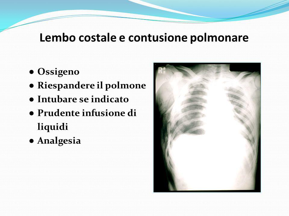 Lembo costale e contusione polmonare