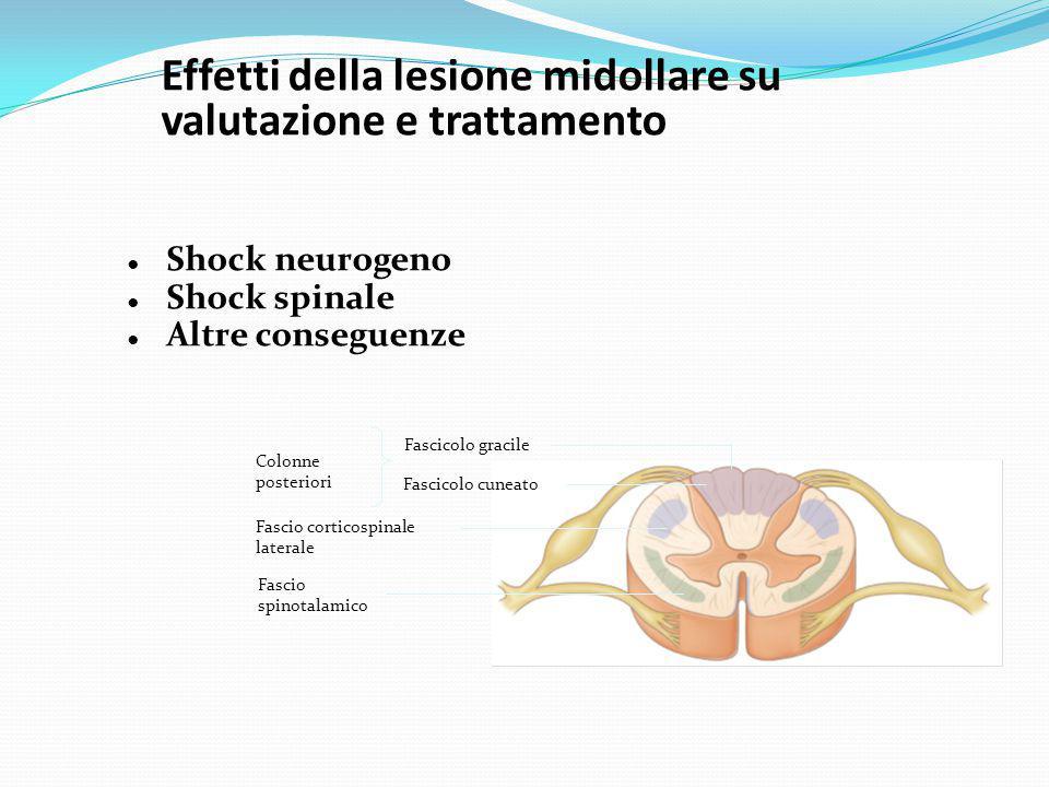 Effetti della lesione midollare su valutazione e trattamento