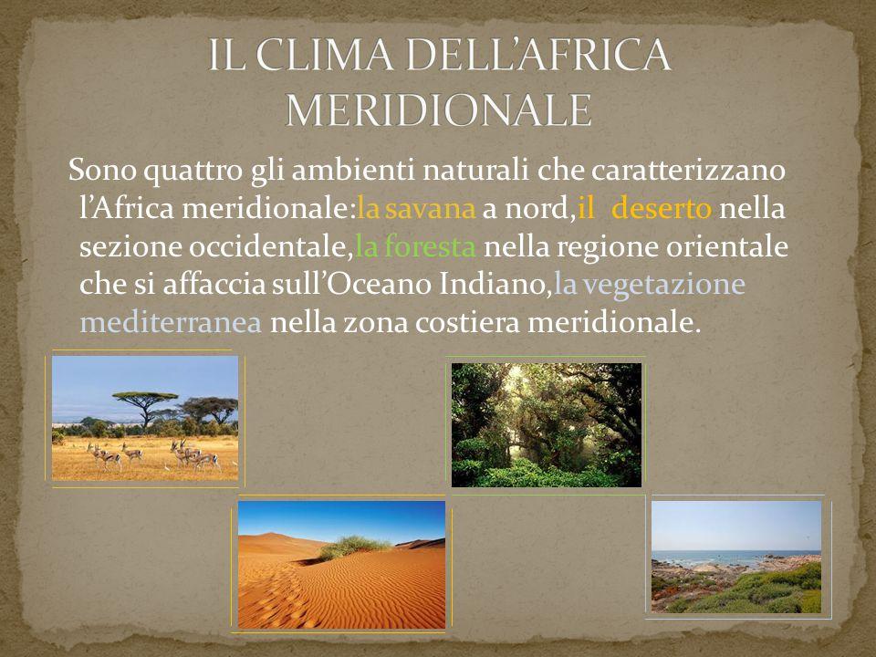 IL CLIMA DELL'AFRICA MERIDIONALE