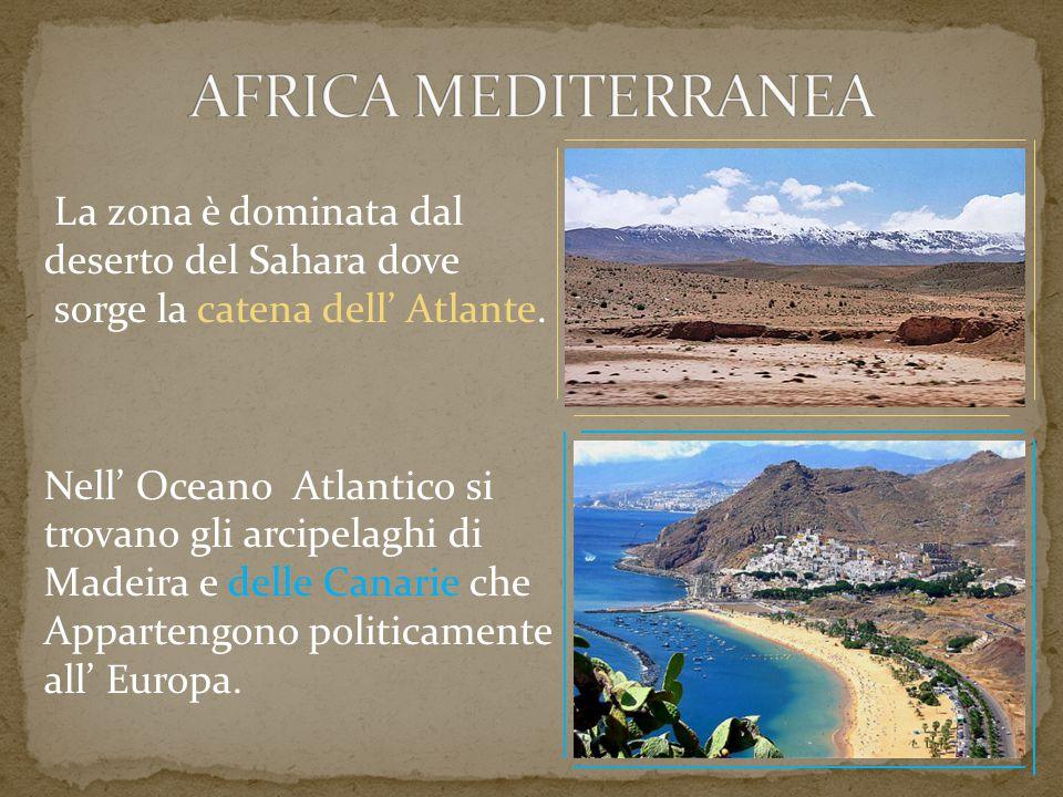 AFRICA MEDITERRANEA