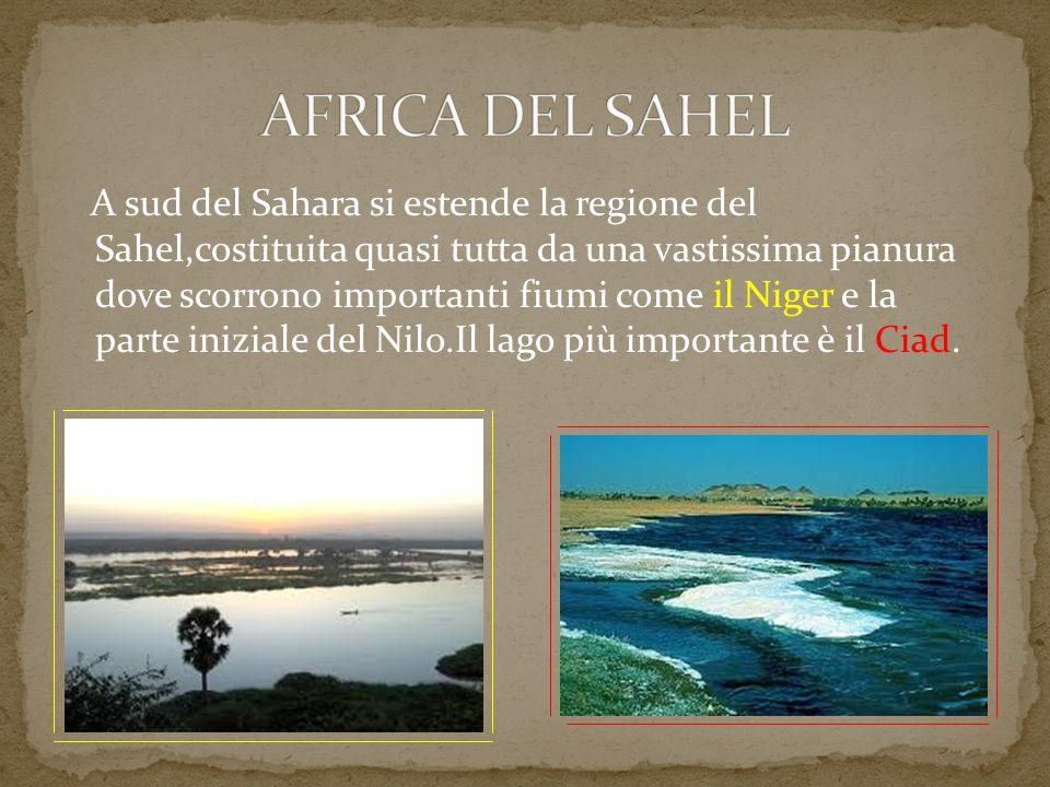 AFRICA DEL SAHEL