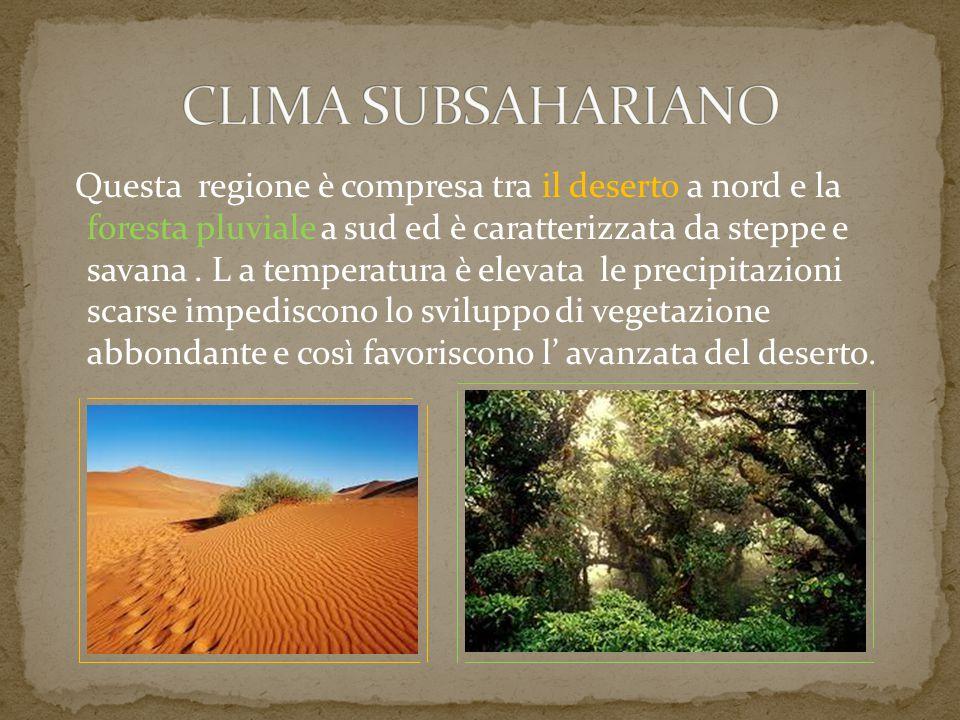 CLIMA SUBSAHARIANO