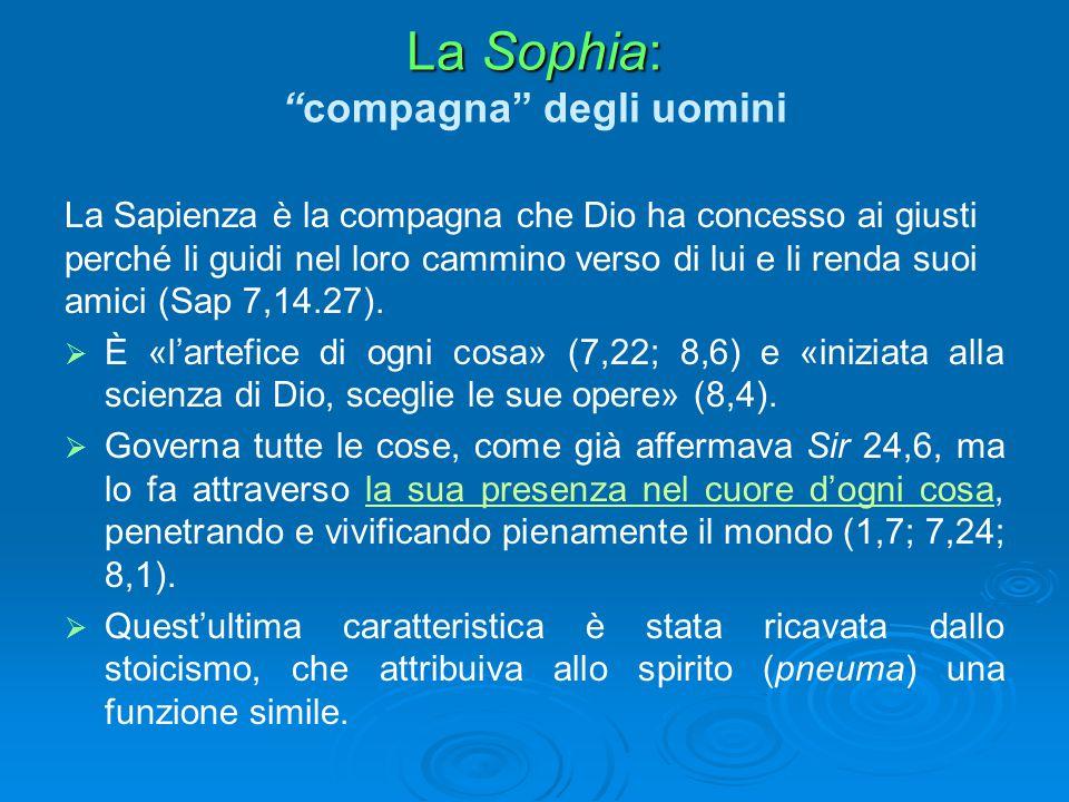 La Sophia: compagna degli uomini