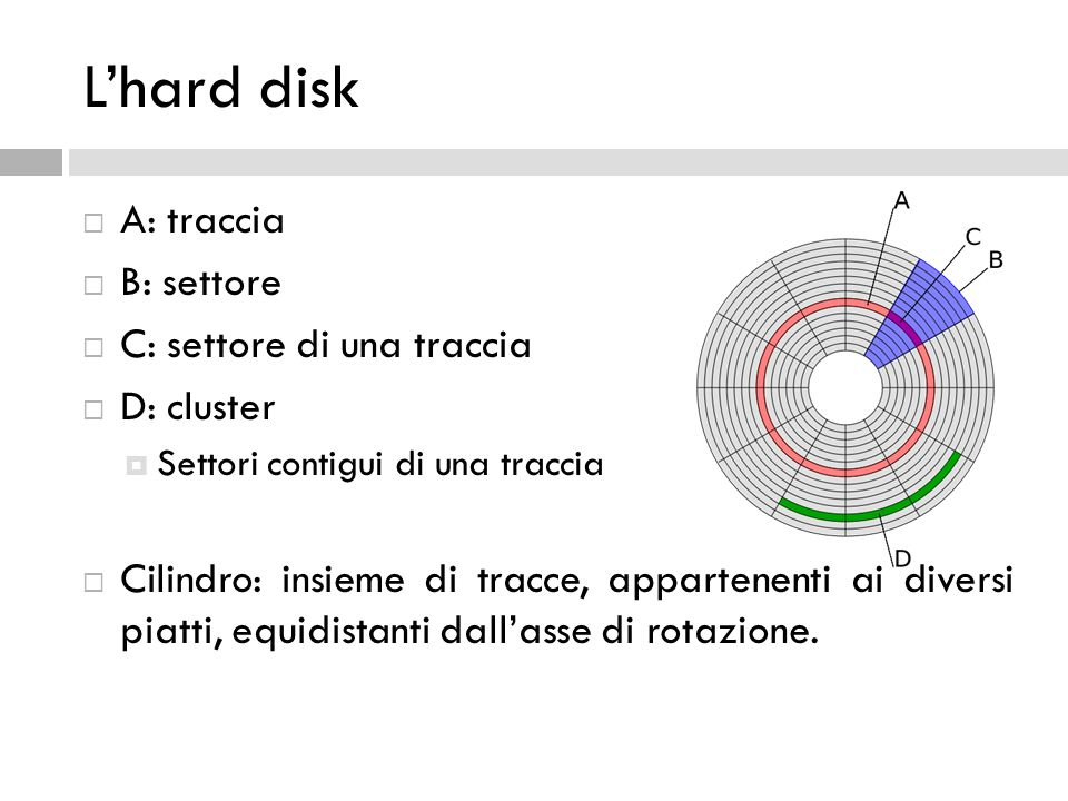L'hard disk A: traccia B: settore C: settore di una traccia D: cluster