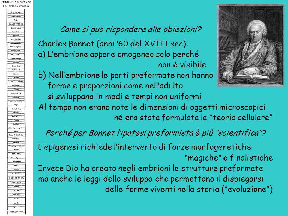 Perché per Bonnet l'ipotesi preformista è più scientifica