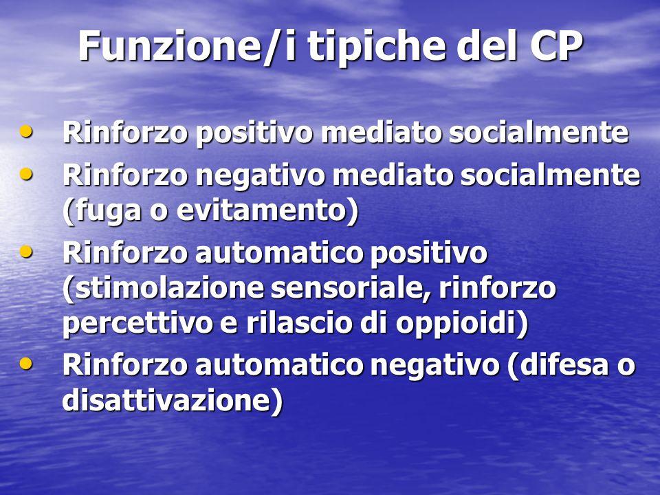 Funzione/i tipiche del CP