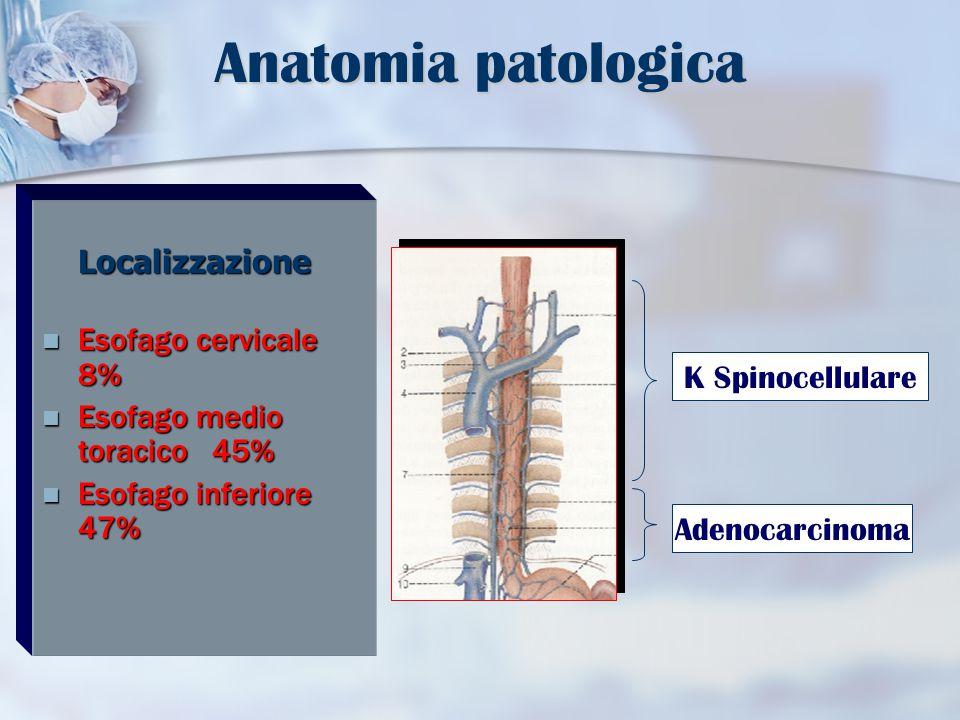 Anatomia patologica Localizzazione Esofago cervicale 8%